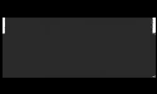 Logo Brillantina Llinetti